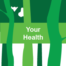Your health 2016